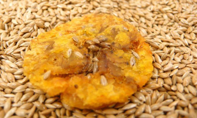 Uso del alpiste en la cocina juan mari arzak for Programas de cocina de tve
