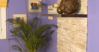 Estanter�a en pared de piedra artifical
