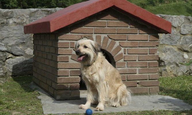 Pintar tejado en caseta de perro bricoman a - Como hacer una caseta de obra ...