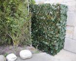 Celosia extensible decorativa