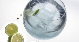 Gin tonic (sin alcohol)