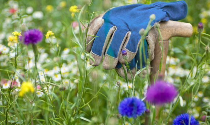 Tipos de guantes de jardiner a hogarmania - Guantes jardineria ...