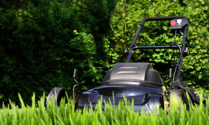 Herramientas para el mantenimiento del jard n i bricoman a for Trabajo de mantenimiento de jardines