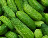 verduras calorías negativas - pepino