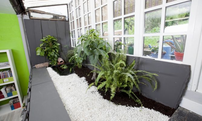 Plantas para estanque hogarmania for Plantas estanque