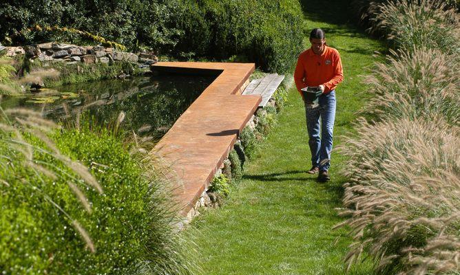 Resembrar las zonas da adas del c sped bricoman a for Bricomania jardin