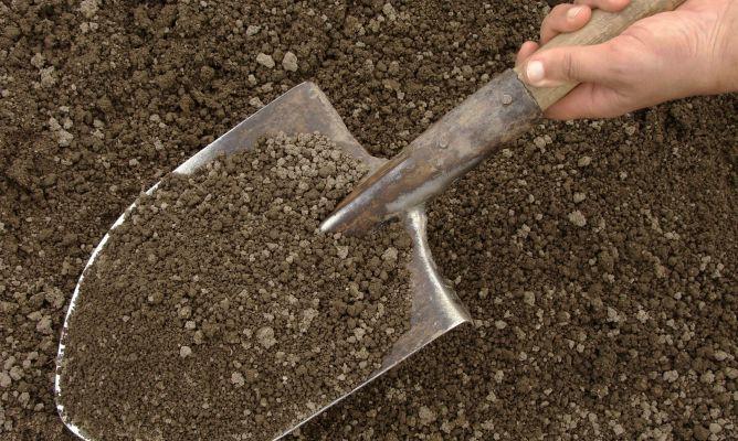 Tipos de suelos para jardiner a hogarmania - Hogarmania jardineria ...