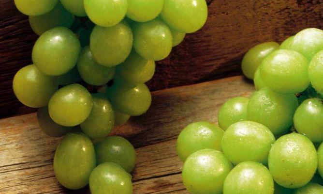 Uva, tipos y uso en la cocina - Hogarmania