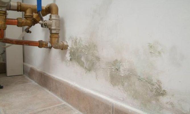 Pintar la humedad de la pared del s tano bricoman a - Humedad en pared ...