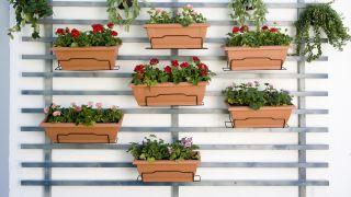 Jardín vertical para terraza o balcón