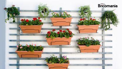 Jard n vertical con un pal bricoman a for Plantas jardin vertical exterior