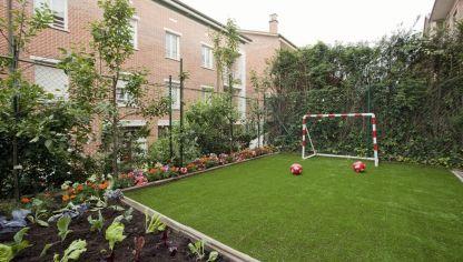 Soleirolia o musgo cama de novia hogarmania for Huerto y jardin