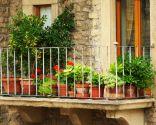 temas jardín 2016 - plantas balcón terrraza