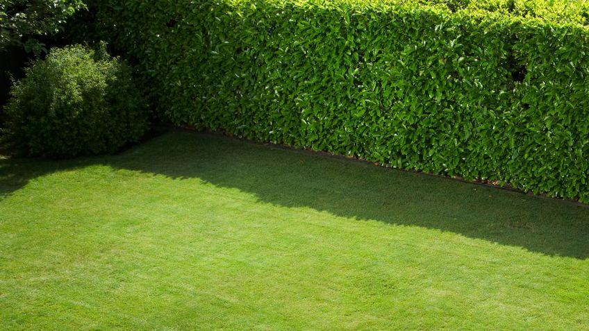 separadores jardin fotos de diseo de cierres de madera