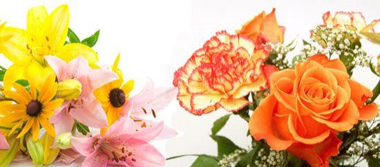 Flores románticas: varias flores rosa, clavel, azucena...
