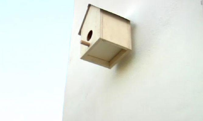 Casa para p jaros hogarmania - Casas para pajaros ...