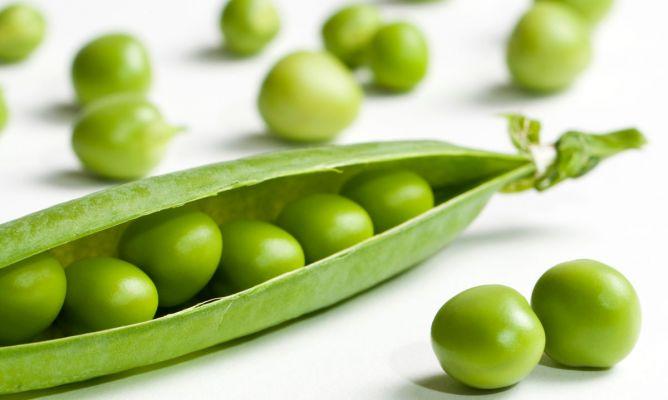 Beneficios de los guisantes para la salud karlos argui ano for Siembra de habas y guisantes