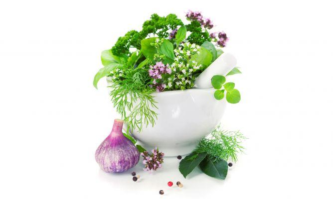 Plantar plantas arom ticas y culinarias decogarden for Jardinera plantas aromaticas