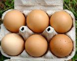 Etiquetado y código de los huevos