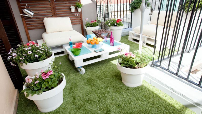 Composición con plantas de primavera y verano para terraza - Decogarden