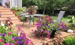 Decoración de jardines: ideas para decorar el exterior