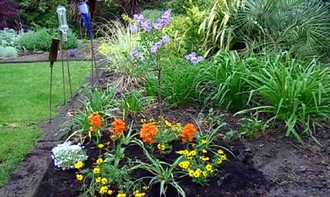 Plantas de verano bricoman a for Matas de jardin