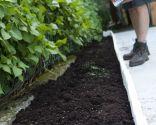 Jardinera de hormigón