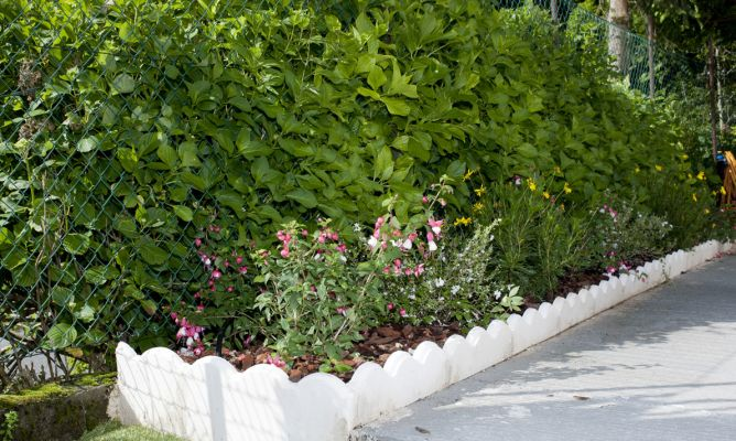 Plantas para jardinera de hormig n bricoman a - Jardineras para jardin ...