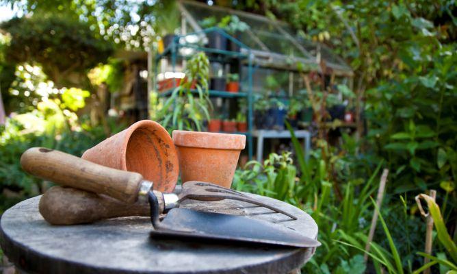 Tareas de jardiner a en julio hogarmania - Imagenes de jardineria ...