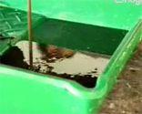 Cambiar el aceite del cortacésped