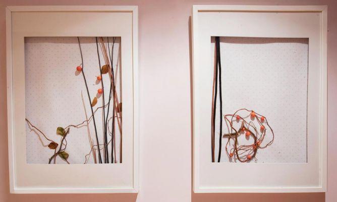C mo hacer cuadros con elementos naturales decogarden - Marcos de cuadros originales ...