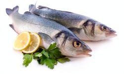pescados - dieta cardiosaludable