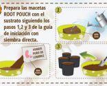 Cómo cultivar un huerto urbano en semilleros - Paso 5