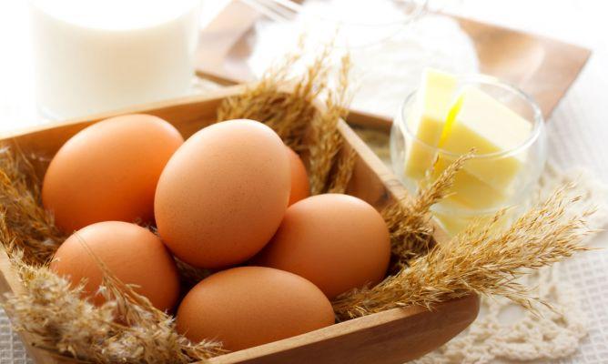Huevo, alimento de gran interés nutricional - Karlos Arguiñano