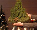 Paso 1 - Árbol de Navidad con poinsettia
