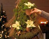 Paso 3 - Árbol de Navidad con poinsettia