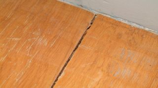 Sellado de juntas en suelo de madera