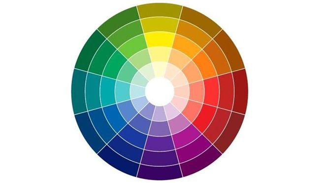 Círculo cromático colores