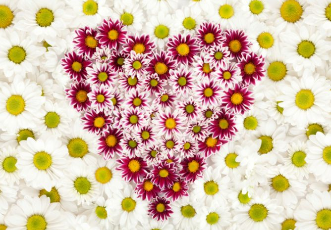 corazones flores