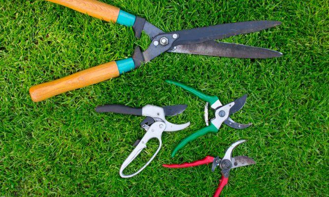 Tijeras de jardiner a hogarmania - Hogarmania jardineria ...