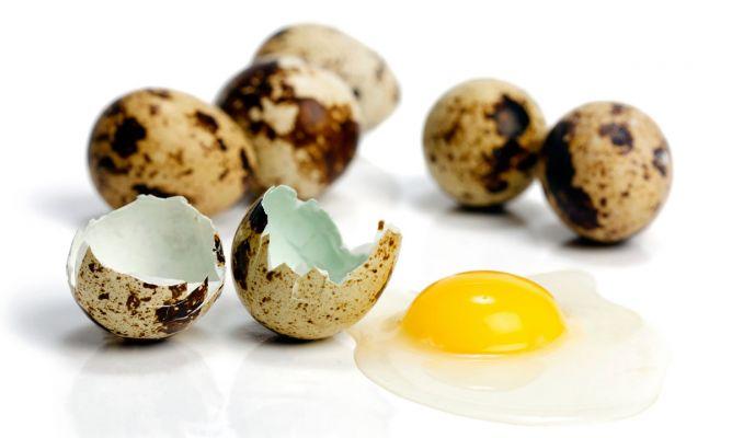 beneficios alimenticios del huevo de codorniz