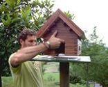 Caseta para pájaros
