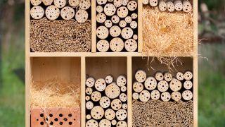 Hotel o hábitat para insectos beneficiosos