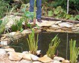 cmo hacer un estanque para el jardn