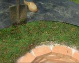 Barbacoa circular