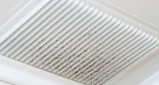 Limpiar el moho del ba o hogarmania - Limpiar moho cortinas bano ...