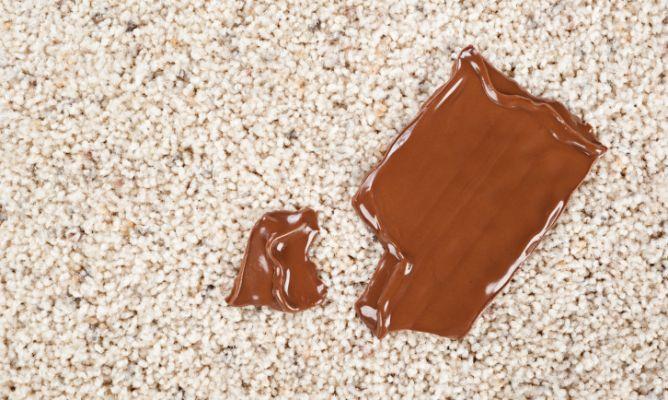 Limpiar manchas de chocolate de una alfombra hogarmania for Limpiar alfombras amoniaco