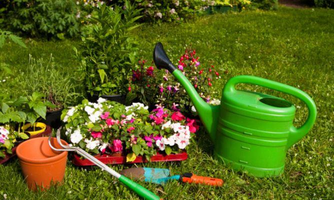 Resultado de imagen de Plantar un Jardín