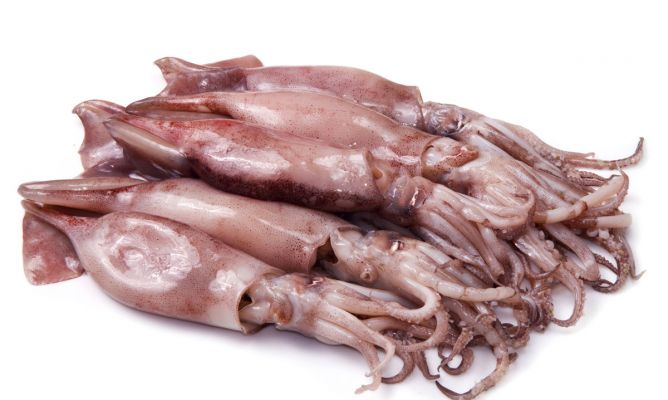 C mo limpiar calamares karlos argui ano - Limpiar calamares pequenos ...