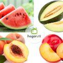 Frutas de verano